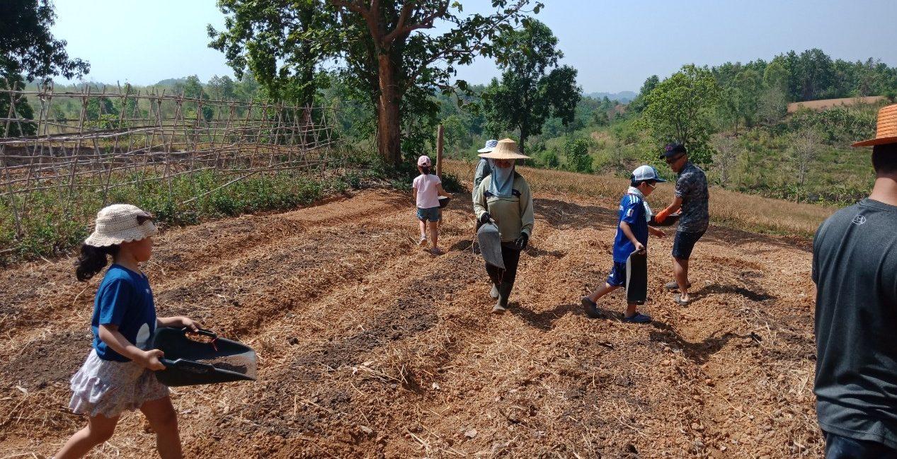 Chiang Rai: A Day On An Organic Farm  チェンライのオーガニック農園で農業体験